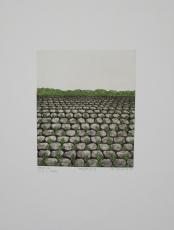 Verena Vernunft: Fortpflanzung, 1976