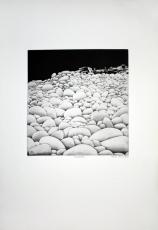 Verena Vernunft: Steinblüten, 1973