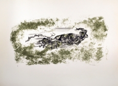 Pierre Zucchelli: Paysage en automme
