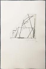 Albert Ràfols-Casamada: Jardi-4, 1985