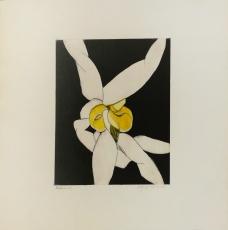 Wolff Buchholz: Doppelfigur vor schwarz , 1966