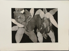 Wolff Buchholz: Gruppe, 1970