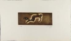 Zush: Aidous grod, 1982