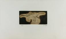 Zush: Orgo, 1982