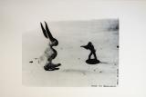 Joseph Beuys: Der Unbesiegbare, 1979