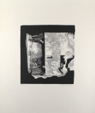 Eberhard Schlotter: Metamorphosen einer Landschaft, 1967