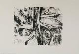 Wolff Buchholz: Gorges du Tarn, 1964